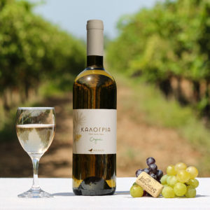 koukos_estate-kalogria-white-1000